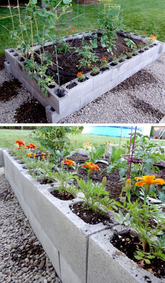 25 Best Ideas About Raised Garden Beds Cinder Blocks On Pinterest