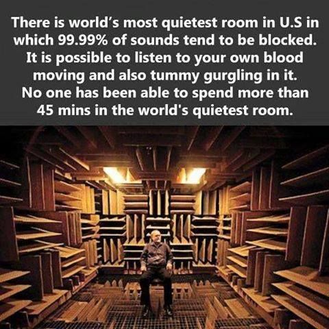 World S Quietest Room