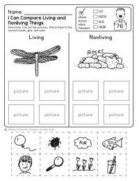 Worksheets For Kindergarten Science - kindergarten science ...