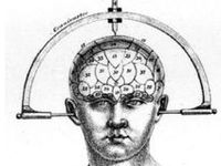 1000+ images about Phrenology (1790-1911) on Pinterest