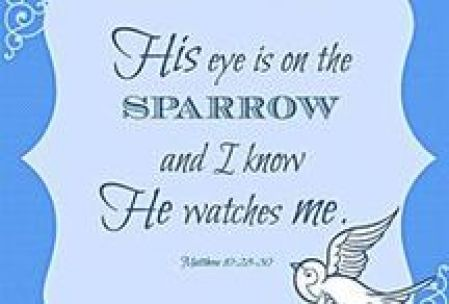 Sandra Brooks McCravy, Sandy McCravy, Sandi McCravy, Greg McCravy, Derek McCravy, Johnathan McCravy, Sparrow, Bible, God