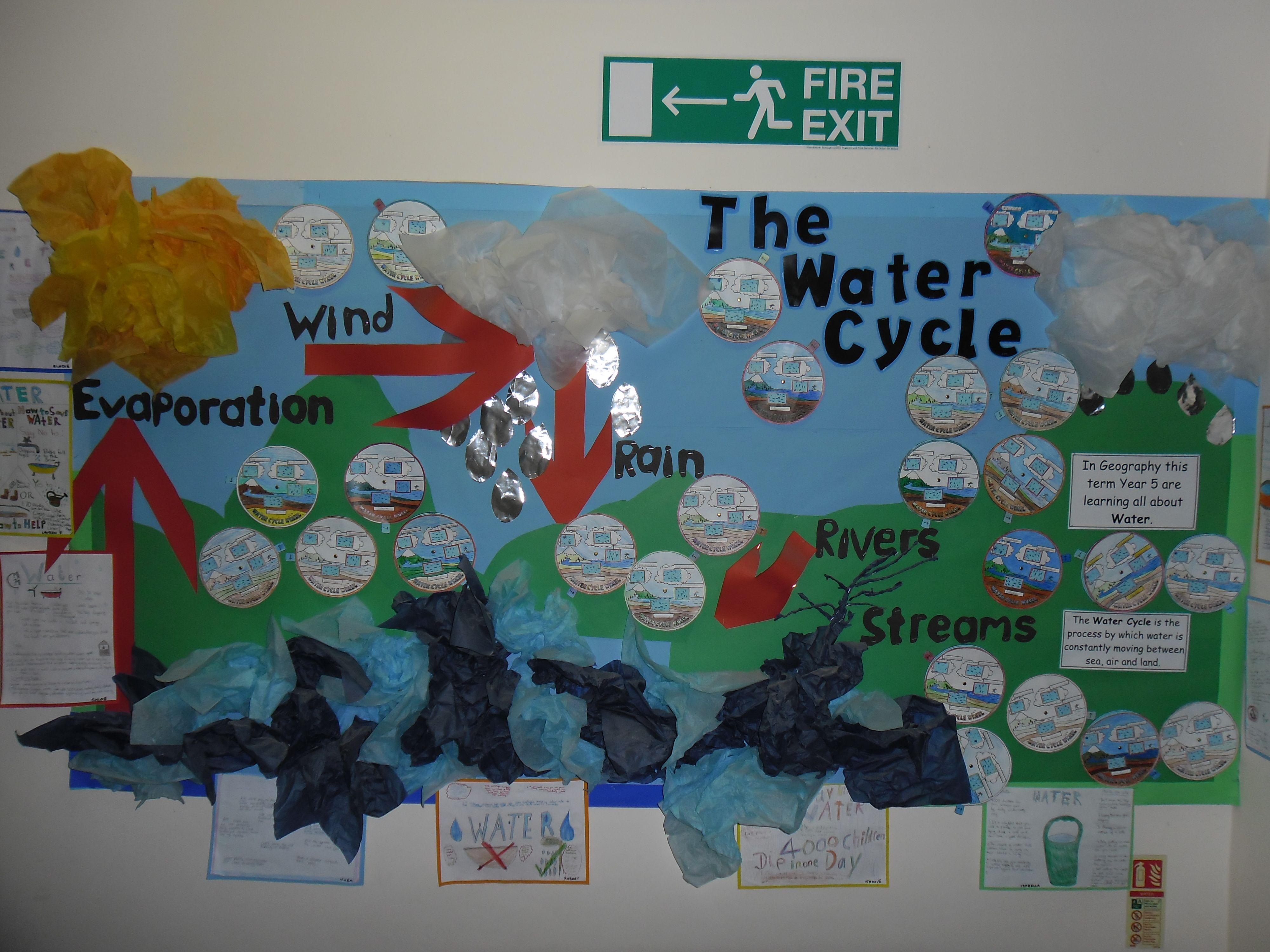 Water Cycle Display