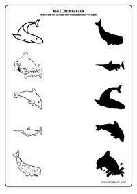 Sea Animals Worksheets,Play School Activity Sheets