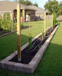 grape trellis design | Grape Trellis is Complete ...