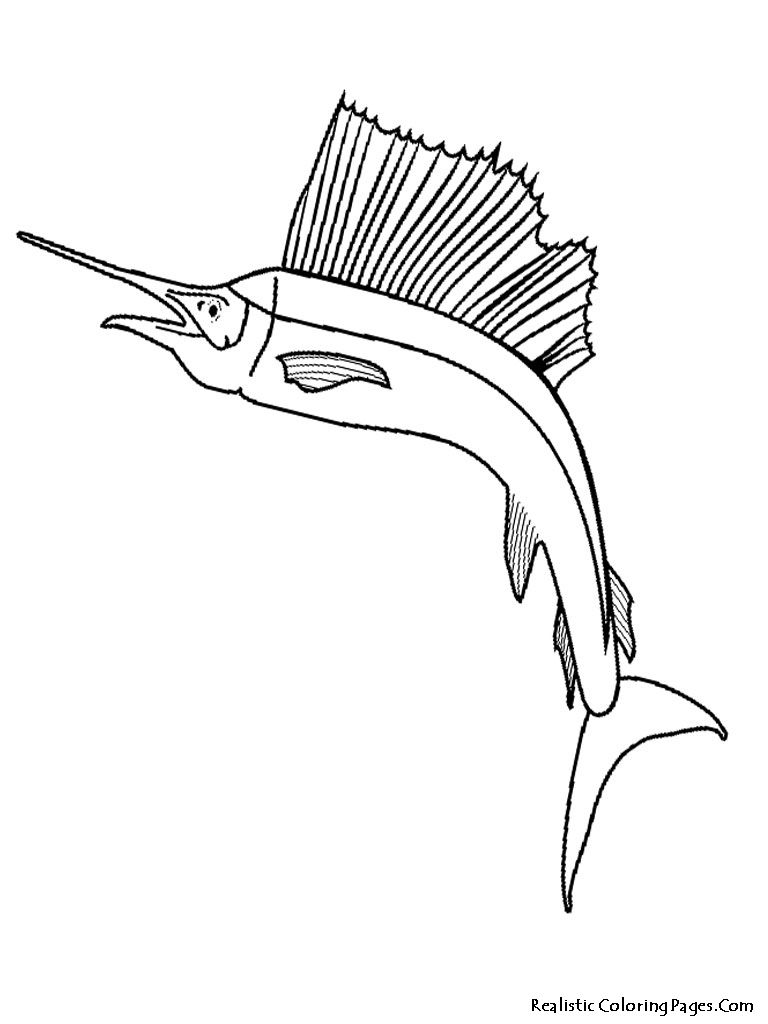 Tropical Fish Coloring Pages Tropical Fish Coloring Pages