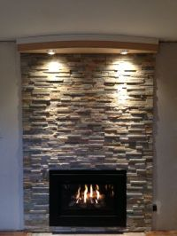 Cappella fireplace insert modern style with Placer Gold ...