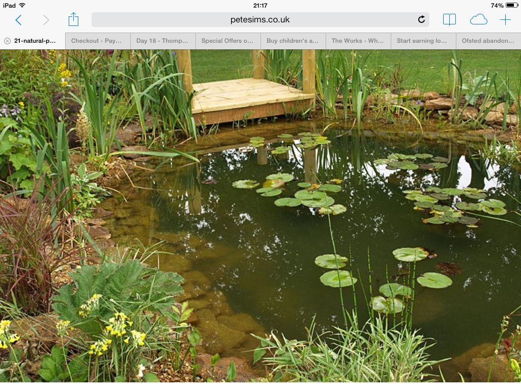 Natural Pond Garden Ideas Wildlife