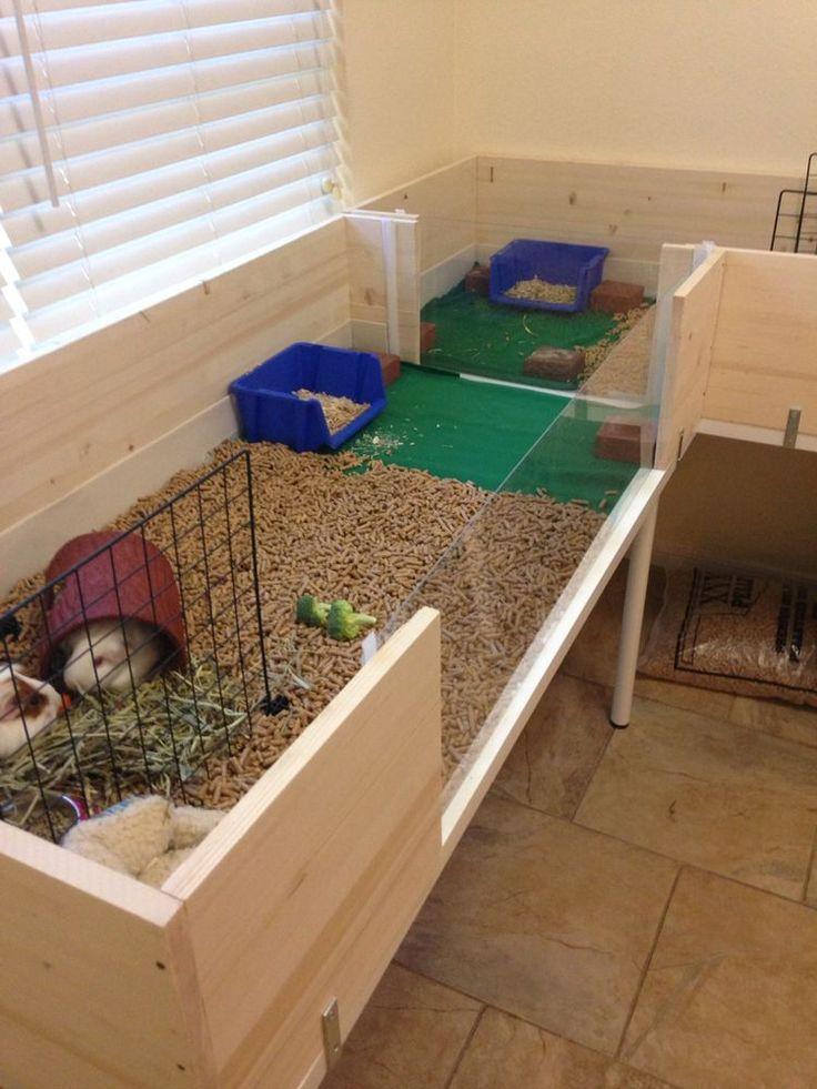 Guinea Pig Houses Diy House Plans And Ideas Pinterest Guinea
