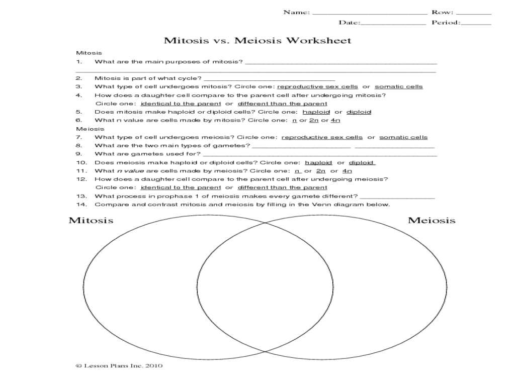 mitosis and meiosis venn diagram worksheet bobcat anatomy google search biology pinterest