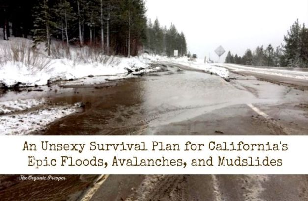 How do you survive a flood, mudslides, avalanches, power outages, and gale force winds? You're going to be so disappointed when I tell you the secret.: