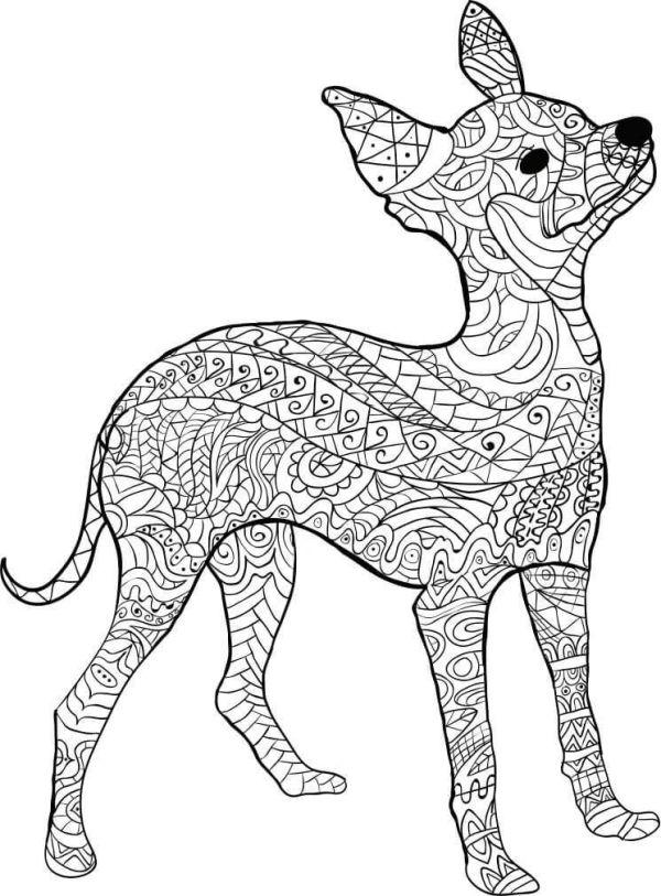 Kostenloses Ausmalbild Hund Dobermann Die Gratis Mvlc