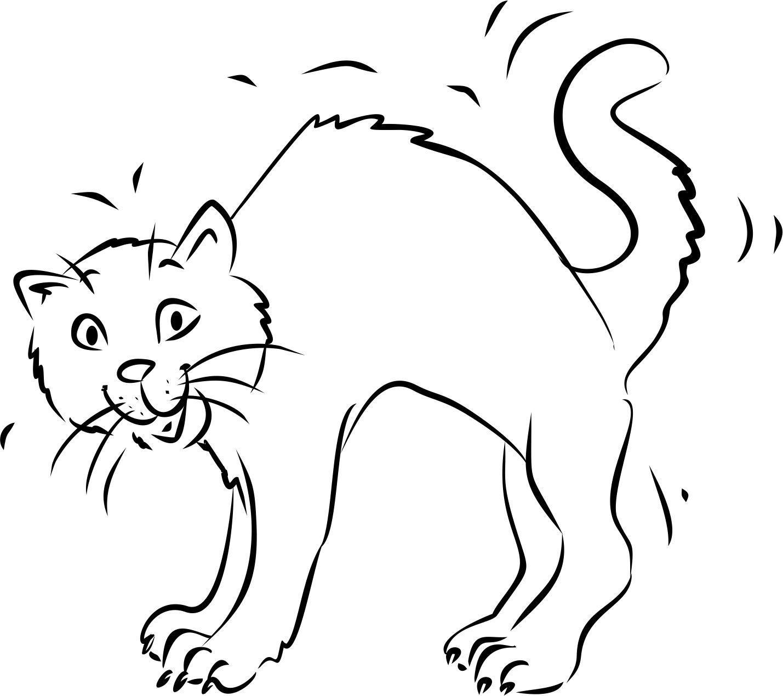 Malvorlage Katze Mit Buckel - tippsvorlage
