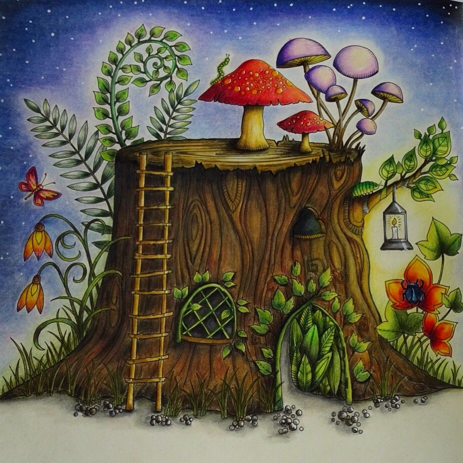 Enchanted Forest Johanna Basford Mushroom I Used