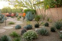 Backyard Desert Landscaping , Desert Landscaping For Your ...