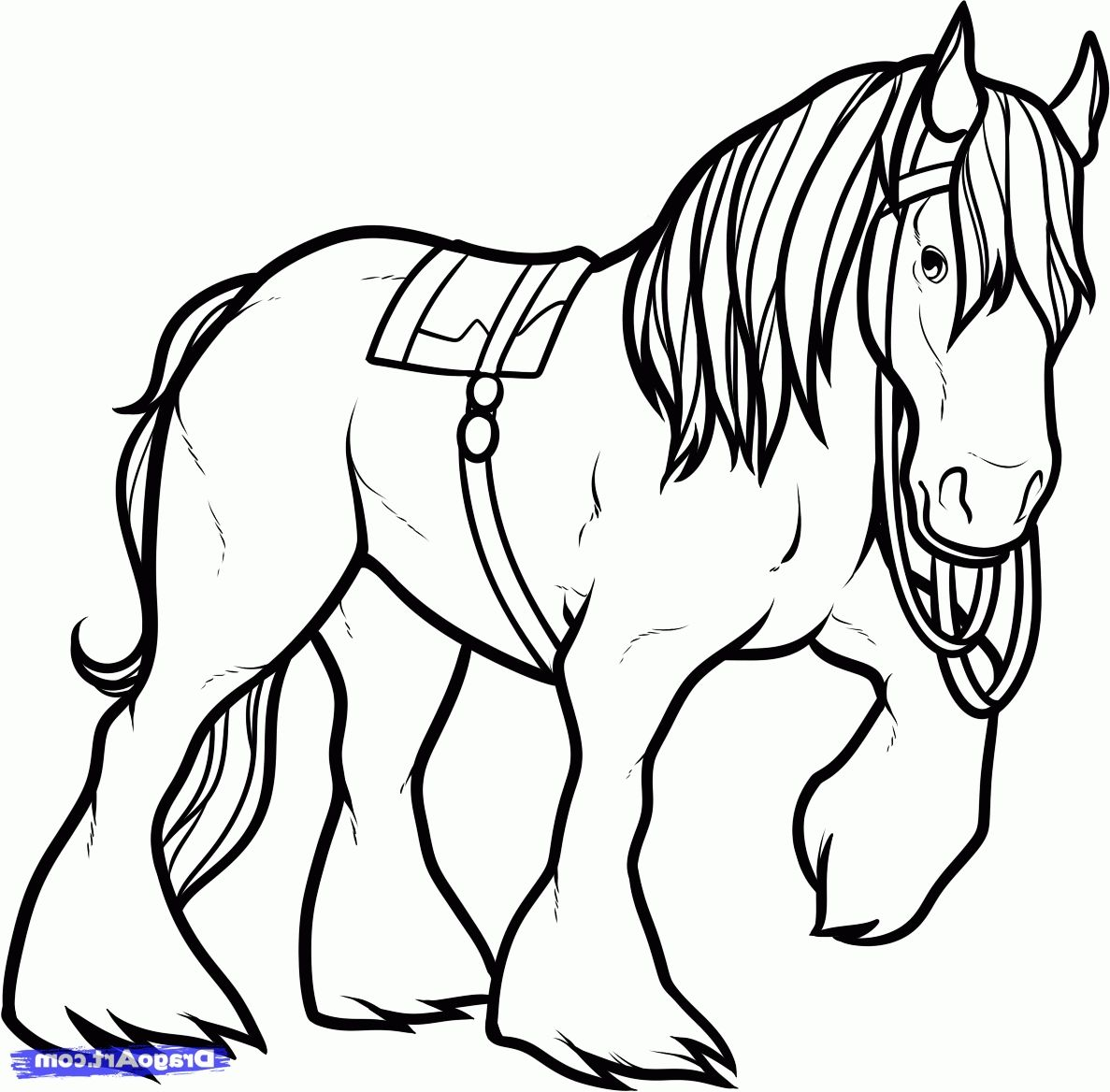 Shire Horse Coloring Pages Clydesdale Coloring Pages