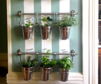 Hanging Indoor Herb Garden | Herb wall, Indoor herbs and Herbs