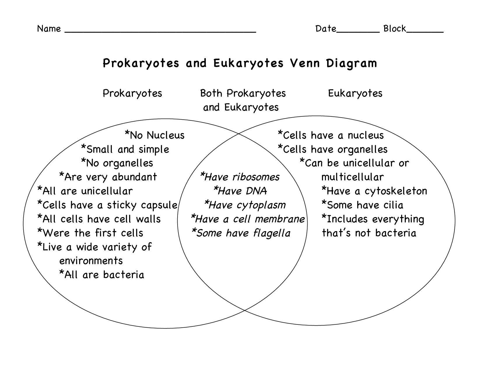 Prokaryotic And Eukaryotic Cells Venn Diagram