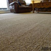 Lowes STAINMASTER Carpet Installation in our Living Room ...