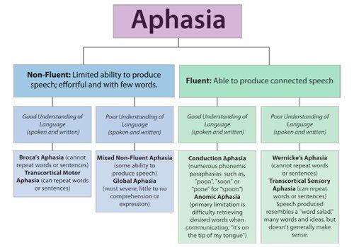 Understanding Aphasia In Stroke Survivors