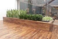 Stylish and modern large-scale planter box created by ...