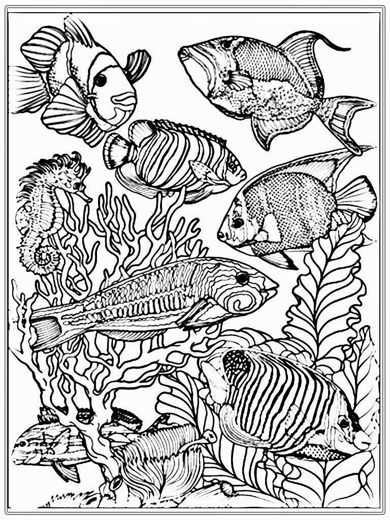 Coloring Pages Exquisite Ocean Coloring Pages For Adults Adult