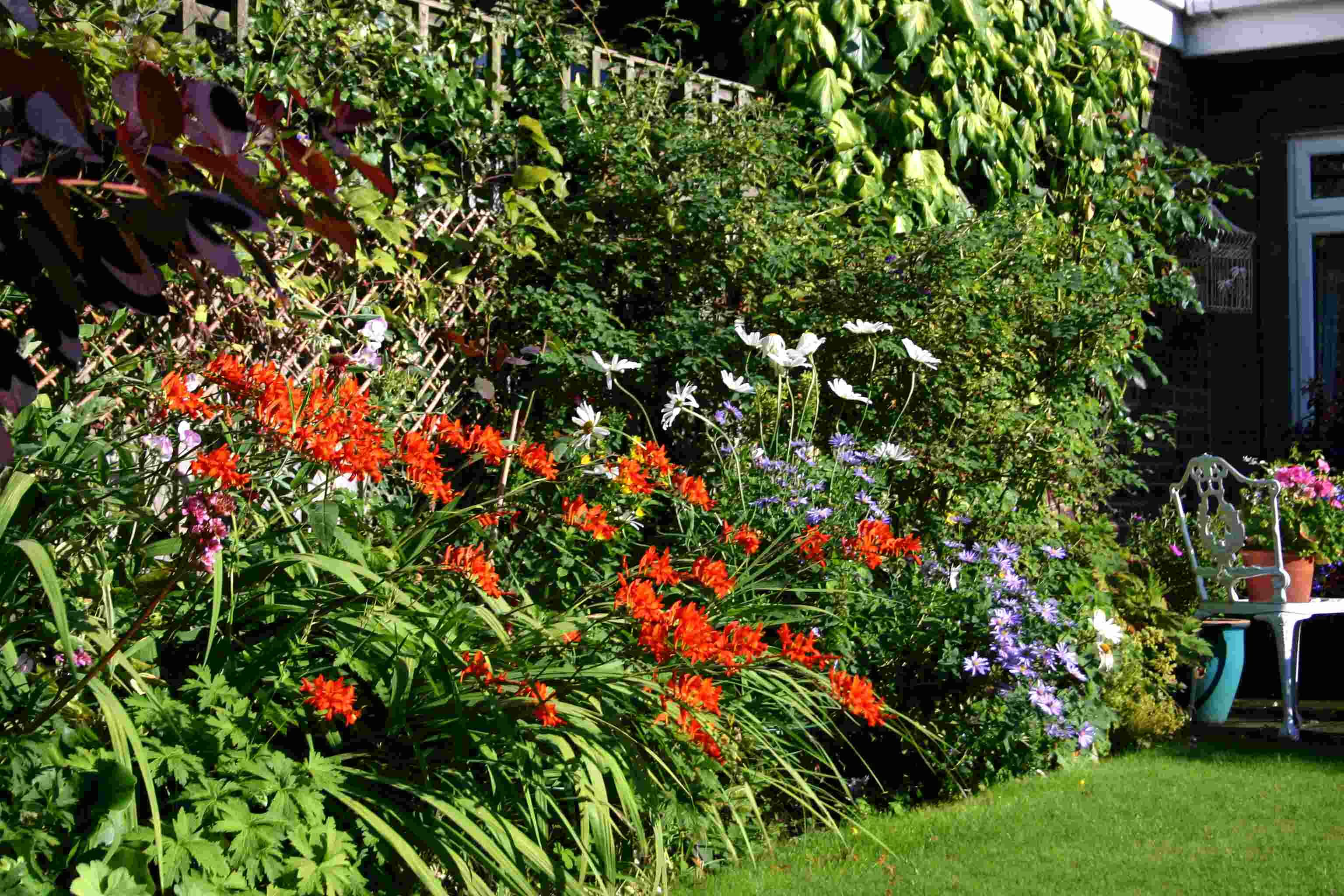 English Borders Gardens Narrow And Searches