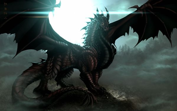 Awesome Dragon Wallpapers Dragons