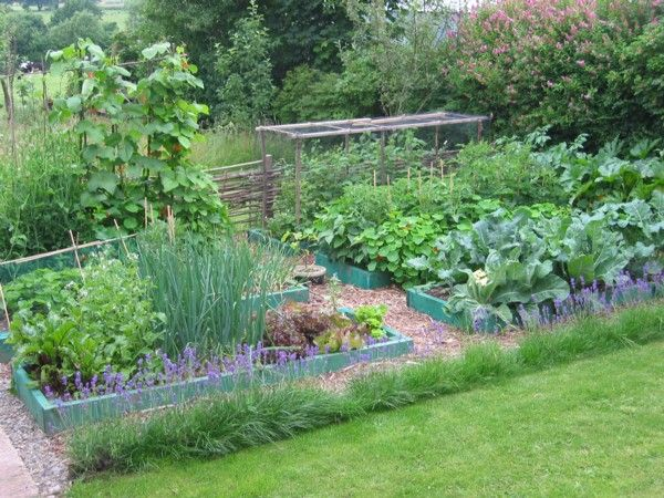 Introduction To Permaculture Course Gardens Beginners And