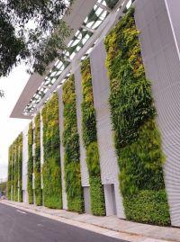 50+ Green wall Design Inspiration   Living walls ...