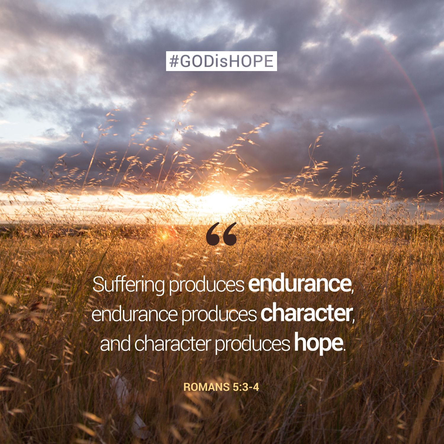 Endurance Quotes Bible Quotes On Endurance And Perseverance Quotes Picture