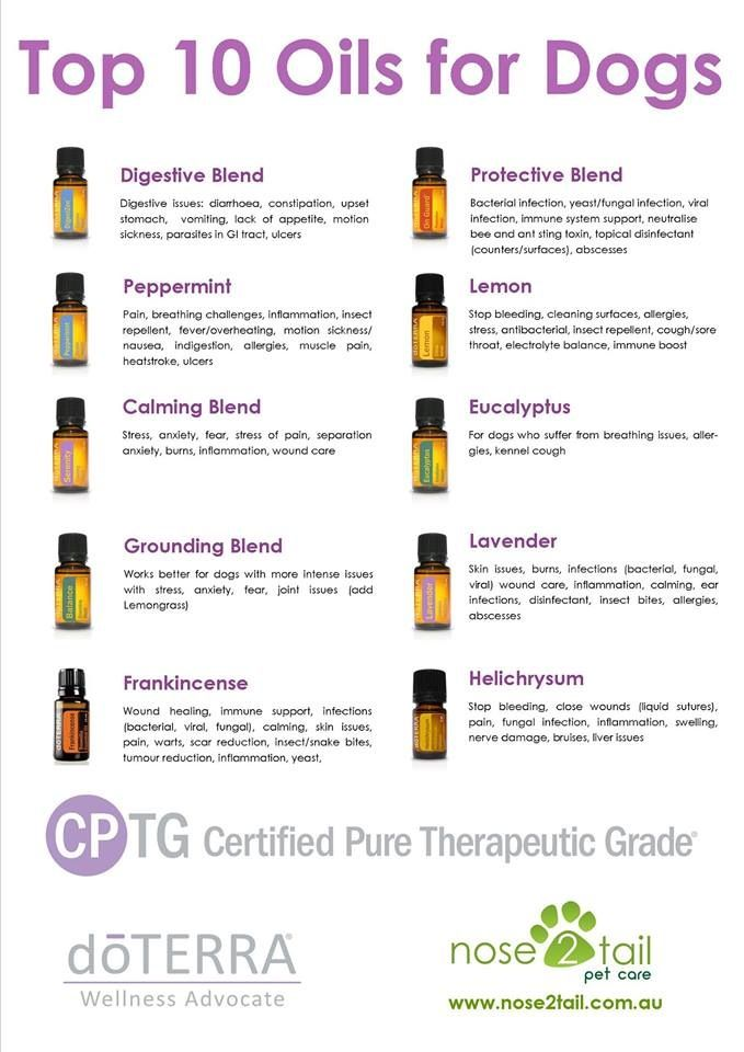 Doterra Oils Safe Cats