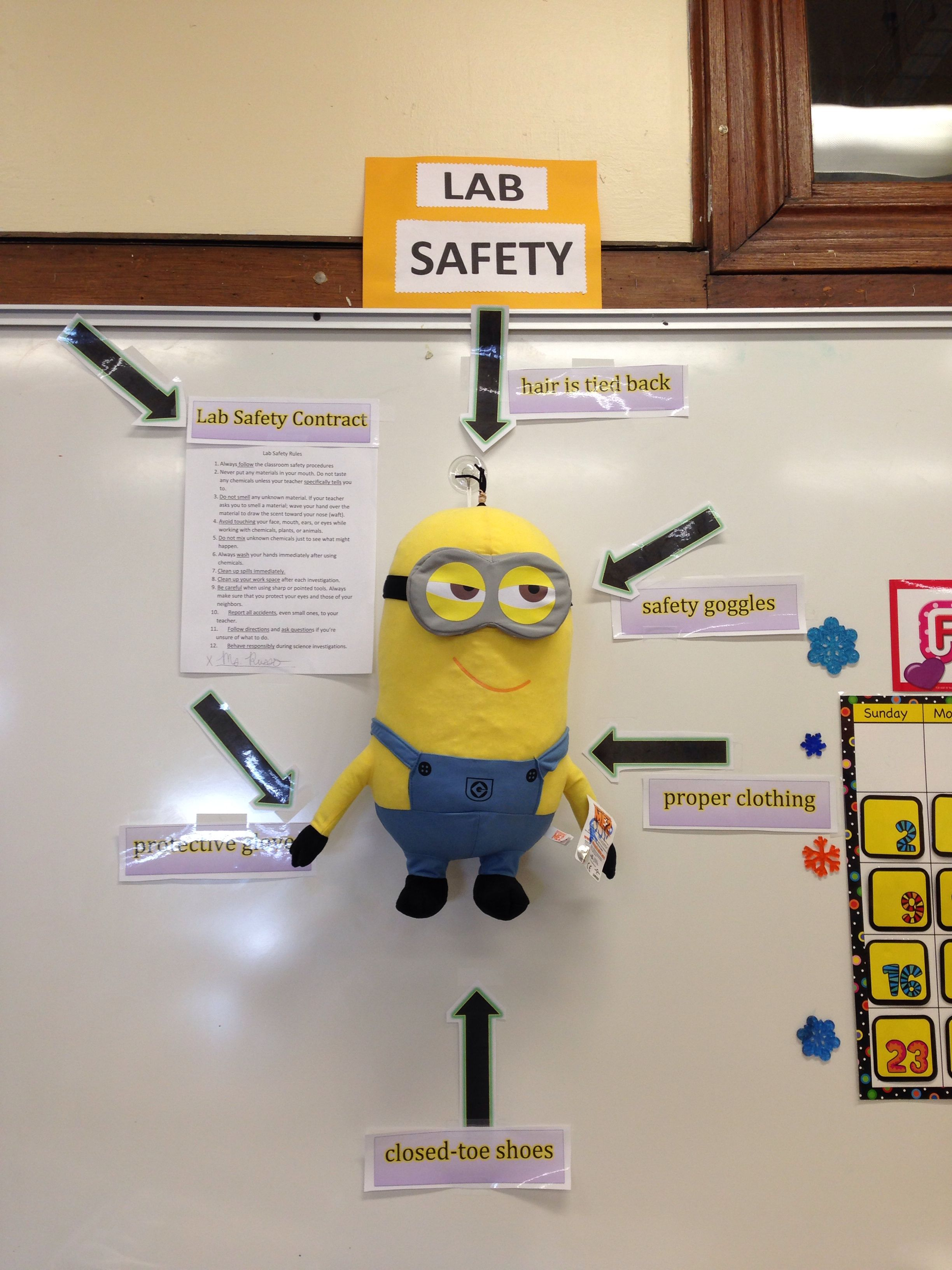 Lab Safety Minions Setting A Good Example For My Sixth