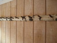 Rustic natural coat rack peg rack hat jewelry hooks Custom