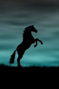 iPhone 4S Backgrounds horse rising up