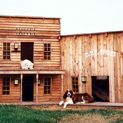 16 Fun & Functional Doghouses Wild West Dog Houses And Corona
