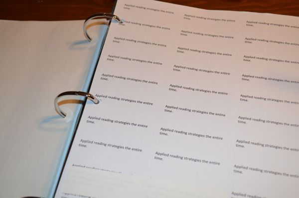 Common Core Standards Labels Easy Anecdotal Notes