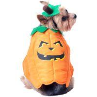 Pumpkin Dog Halloween Costume at #Walmart | Halloween ...