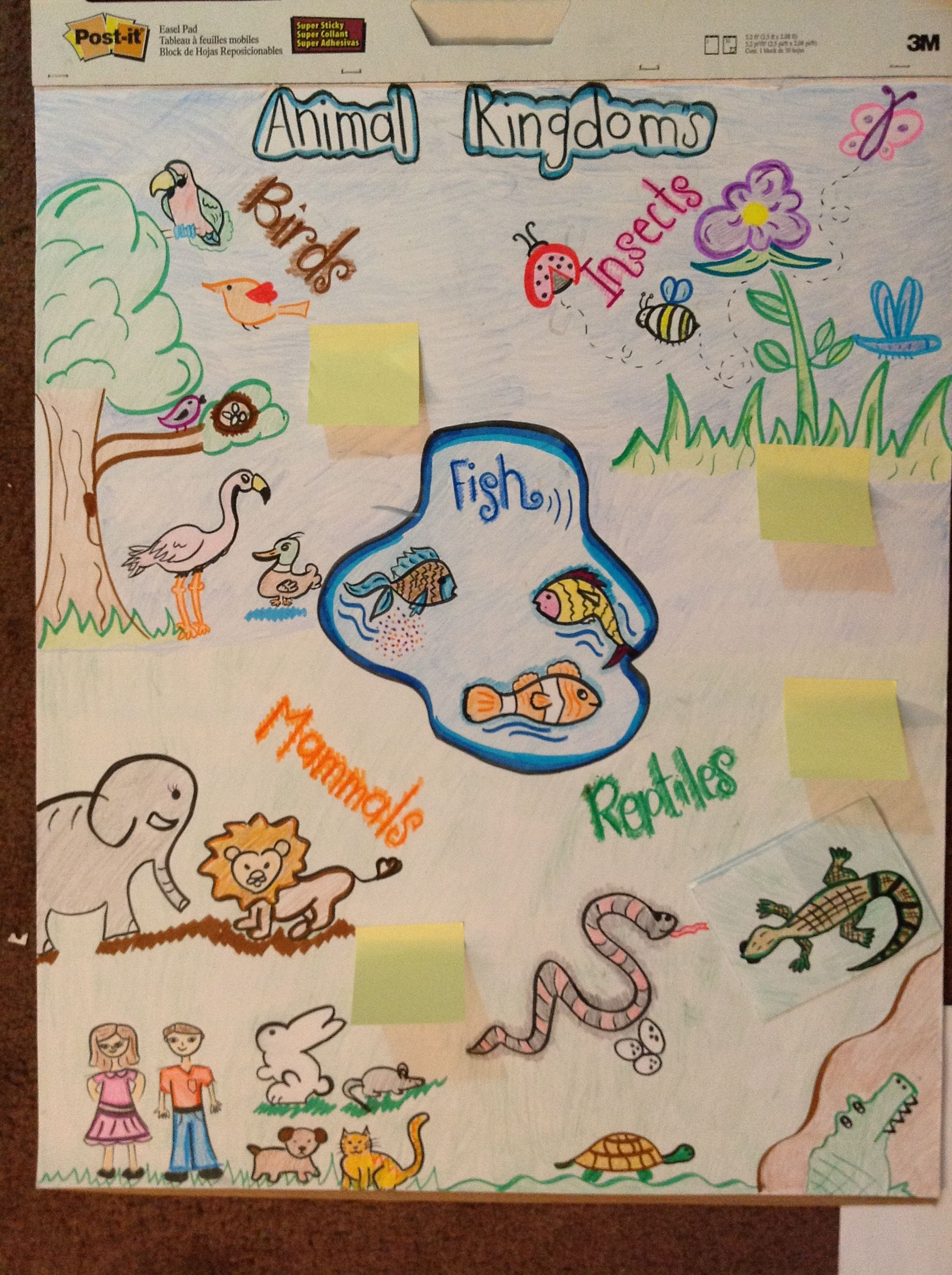 Animals Anchor Chart Kindergarten