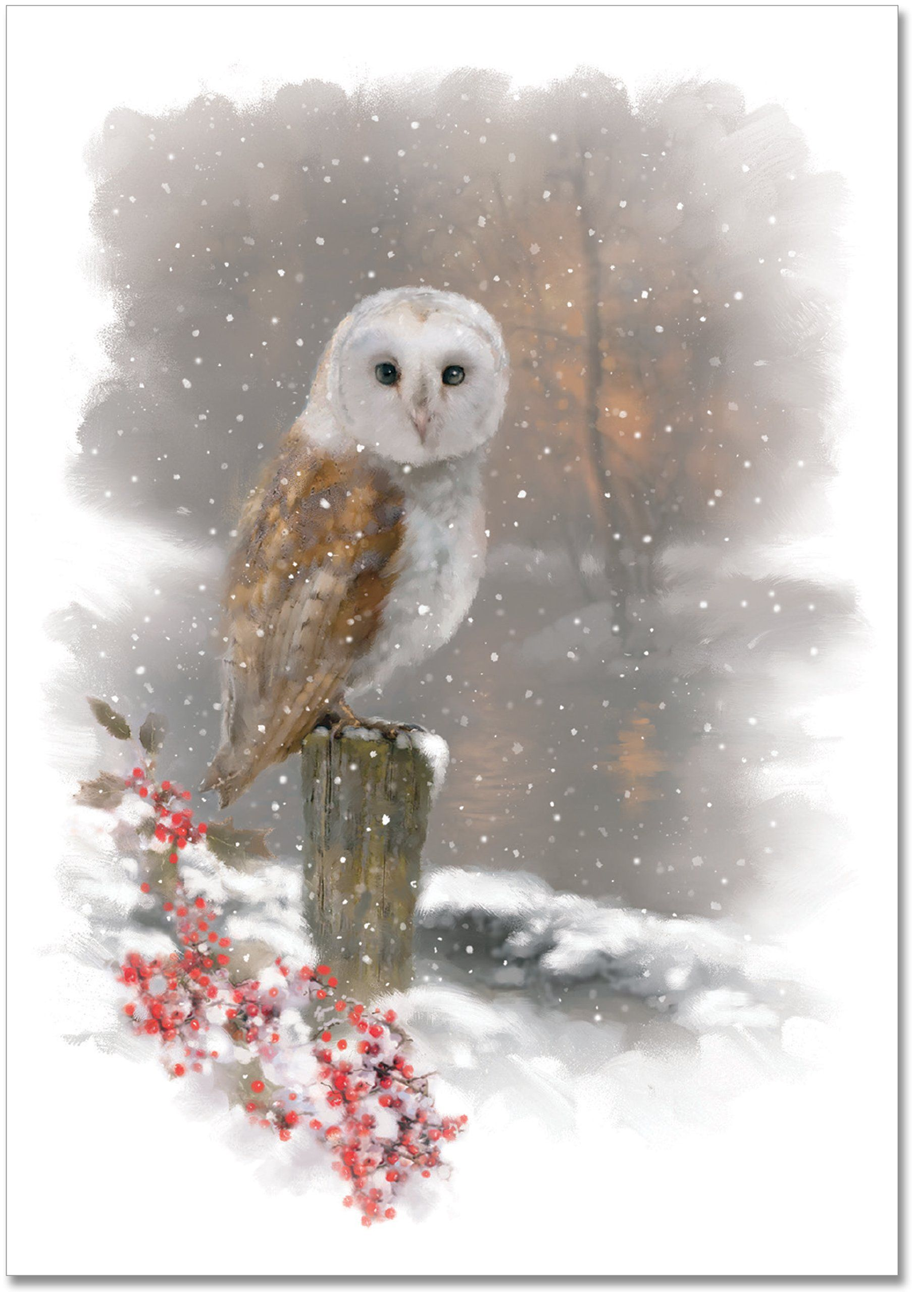 Winter Owl Small Boxed Holiday Cards Christmas Cards