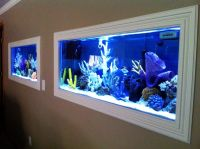Best home aquarium designs