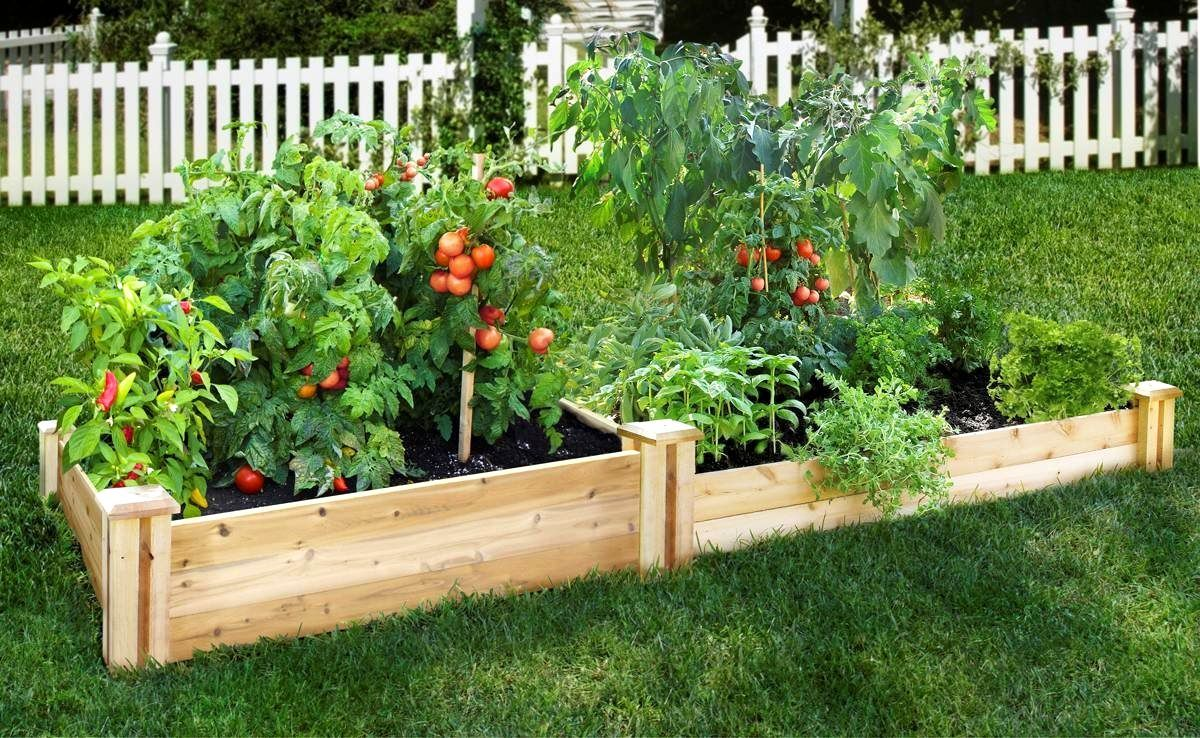 Garden Design With The Benefits Of Vegetable Gardening In Raised
