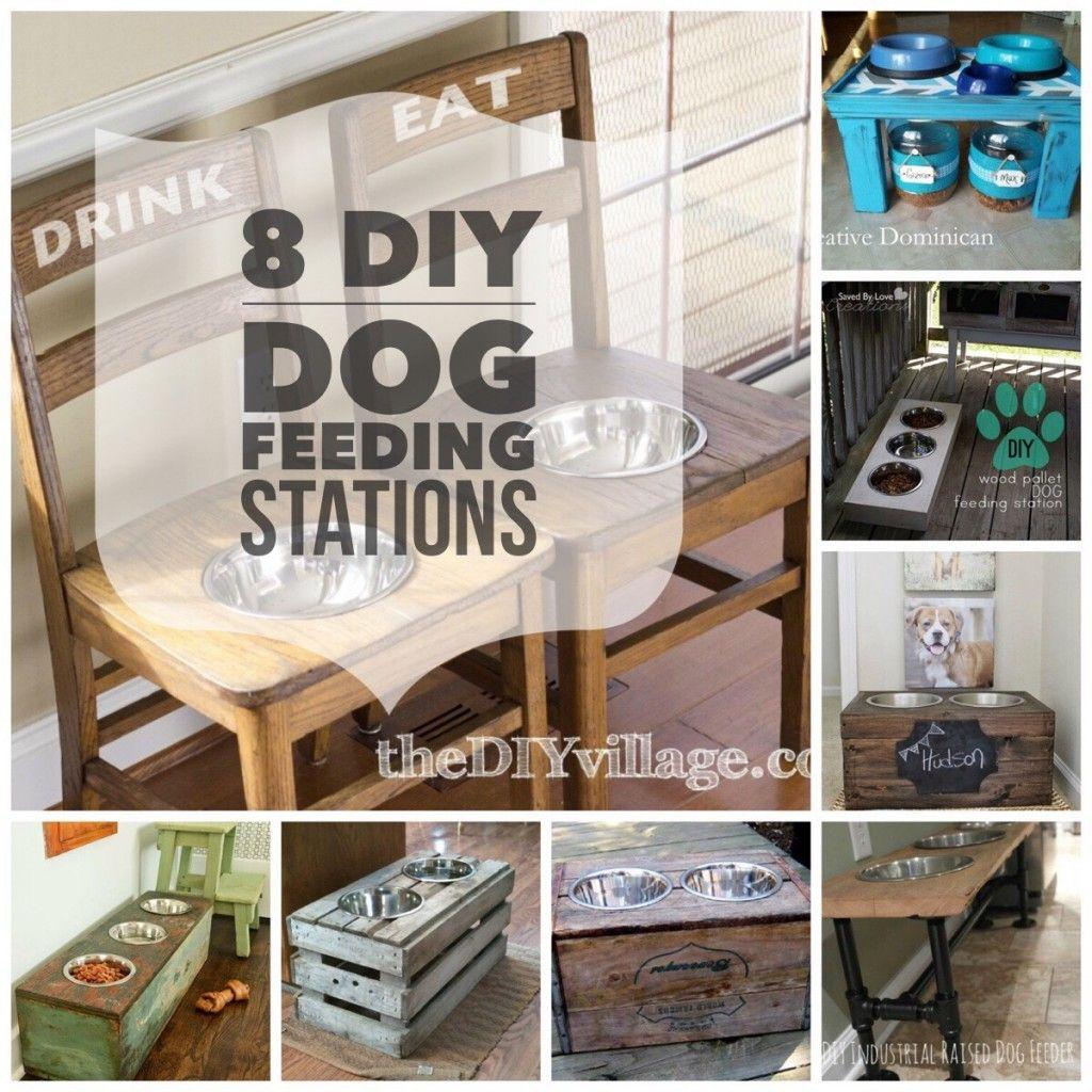 Dog Feeding Station On Pinterest Raised Dog Feeder