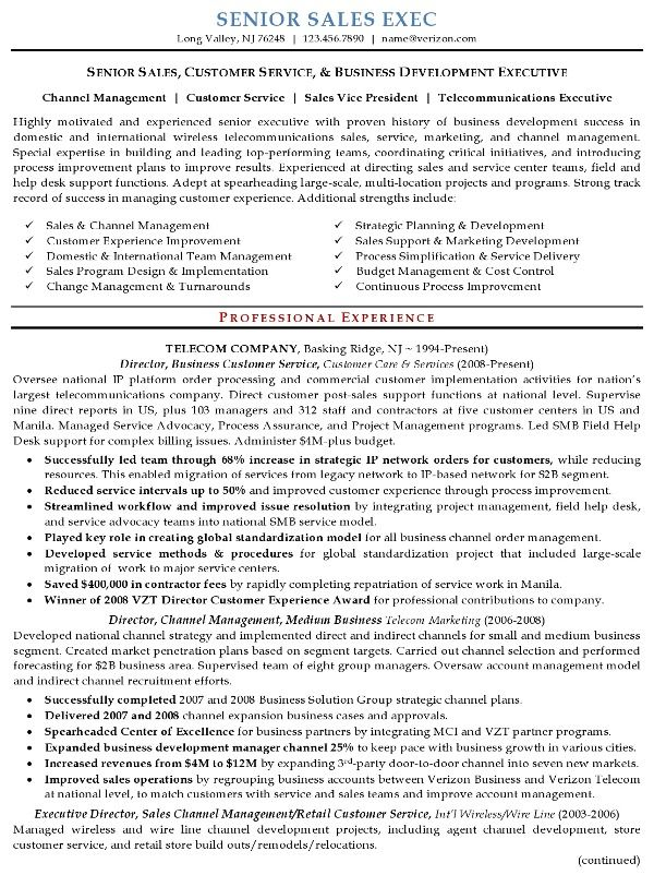 Sales Executive Resume Jobresumesample Com 1297 Sales