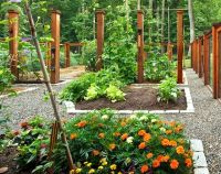 Vegetable Garden Design Ideas Australia Excellent Raised