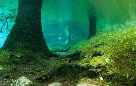 Image result for emerald lake austria newlyplace.com
