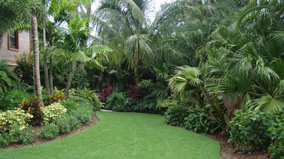 Florida Backyard Landscaping