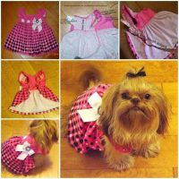 DIY Dog Dress from Baby Dress