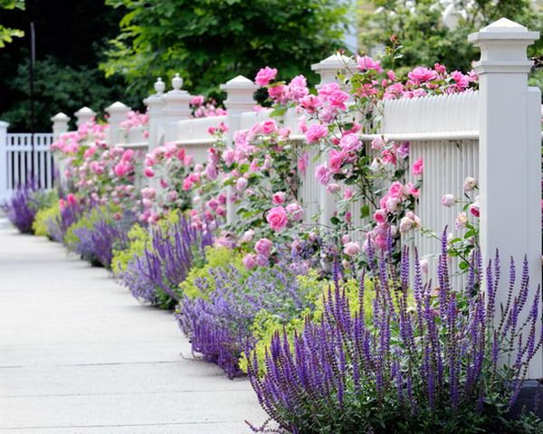 Garden Enchanting Flowers Addition For White Wood Fence Garden