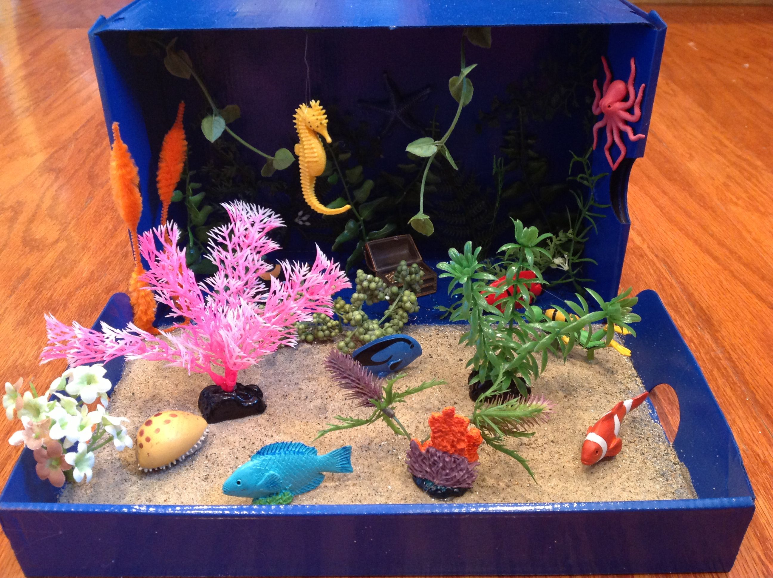 Coral Reef Diorama We Made For First Grade School Project