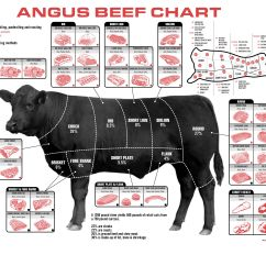 Cow Meat Diagram Wiring For Two Switches To One Light Well Now You Know Eats Pinterest A Angus